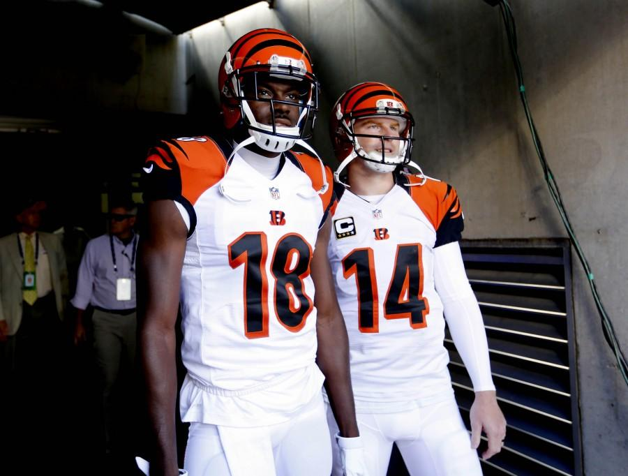 NFL: Atlanta Falcons at Cincinnati Bengals