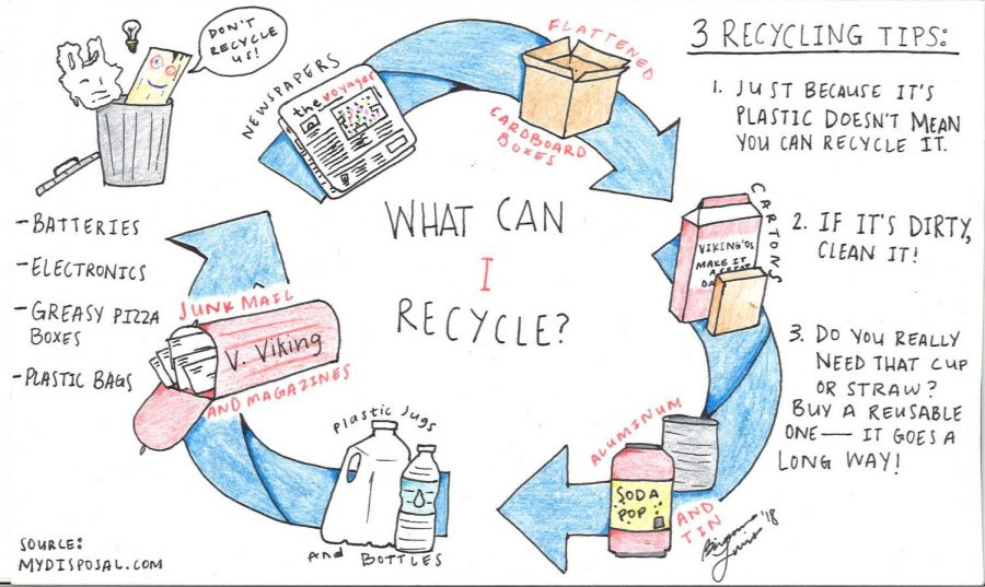 The+truth+about+recycling