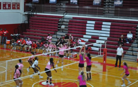 Senior Allison Faoro goes in for the kill in an Oct. 17 game against Sandburg. The Vikings defeated the Eagles two sets to one.