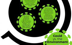 COVID-19 and the Environment: Locally, Nationally and Globally