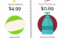 Prices of sustainable vs. non-sustainable items at Target.